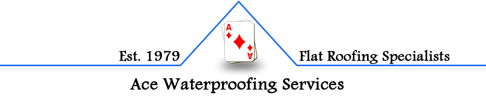 Ace Waterproofing Services Logo